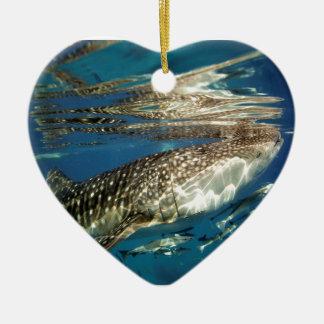 Tiburón de ballena y pescados del remora adornos