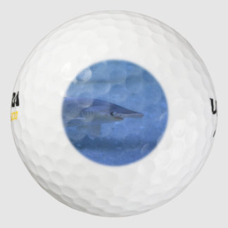 Tiburón de Bonnethead Pack De Pelotas De Golf