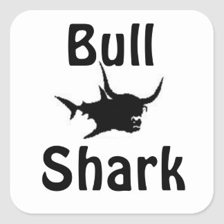 Tiburón de Bull Pegatina Cuadrada