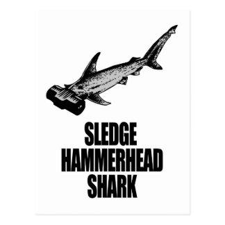 Tiburón de Hammerhead del trineo Tarjetas Postales