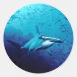 Tiburón de Hammerhead Etiqueta Redonda