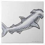 Tiburón de Hammerhead Tejas