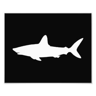 Tiburón de la natación fotografía
