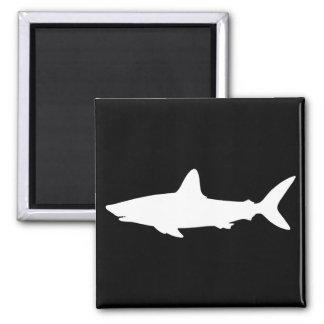 Tiburón de la natación imán cuadrado