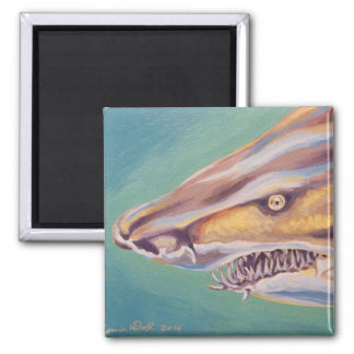 Tiburón de tigre de arena imán cuadrado