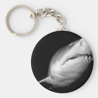 Tiburón de tigre de arena llavero redondo tipo pin