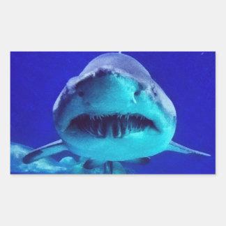 Tiburón de tigre pegatina rectangular