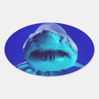Tiburón de tigre pegatina ovalada