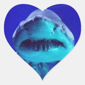 Tiburón de tigre pegatina en forma de corazón