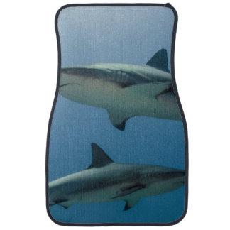 Tiburón del Caribe del filón Alfombrilla De Auto