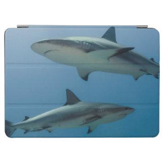 Tiburón del Caribe del filón Cover De iPad Air