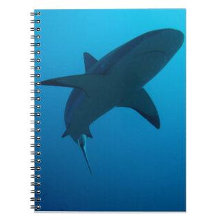 Tiburón del Caribe del filón Cuaderno