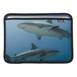 Tiburón del Caribe del filón Funda MacBook