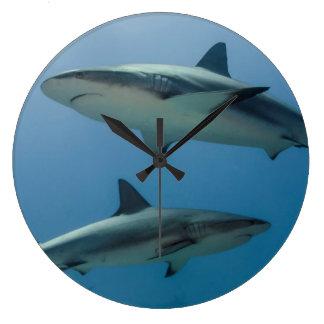 Tiburón del Caribe del filón Reloj Redondo Grande