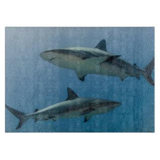 Tiburón del Caribe del filón Tabla Para Cortar