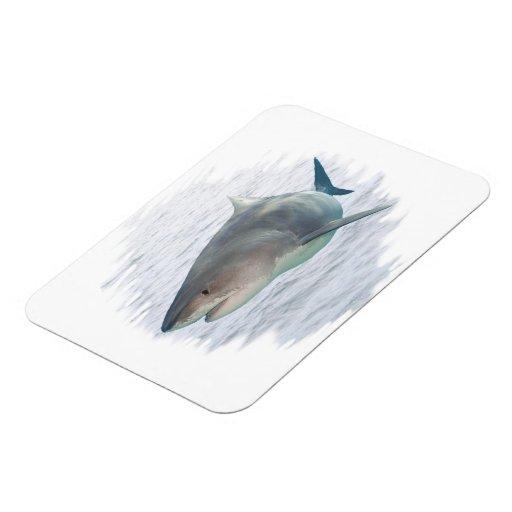 Tiburón en el premio FlexMagnet del agua 3X4 Imanes Rectangulares
