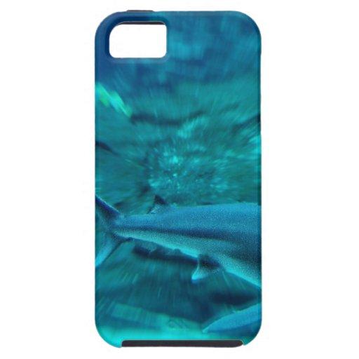 Tiburón en la caza iPhone 5 Case-Mate funda