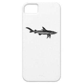 Tiburón gris iPhone 5 cobertura