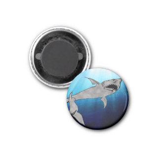 Tiburón Imán Redondo 3 Cm