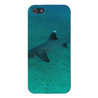 Tiburón impresionante en el profundo iPhone 5 protectores