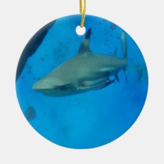 Tiburón inclinado pequeño negro adorno redondo de cerámica