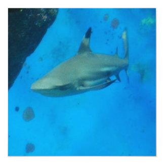 """Tiburón inclinado pequeño negro invitación 5.25"""" x 5.25"""""""
