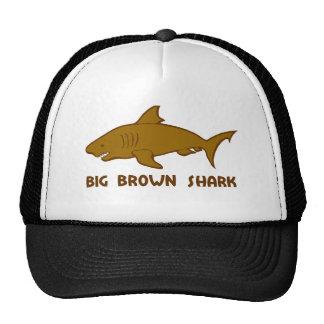 tiburón marrón grande gorros