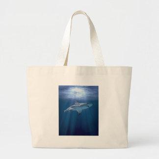 Tiburón que cruza bolsa