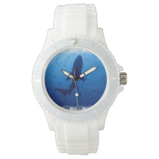Tiburón Reloj