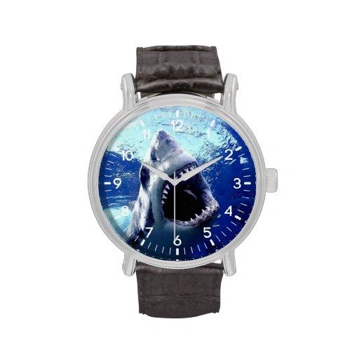 tiburón relojes de mano
