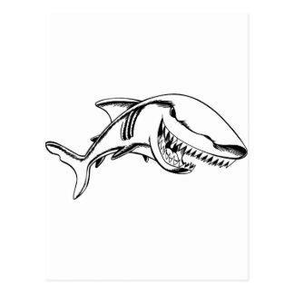 Tiburón Tarjeta Postal