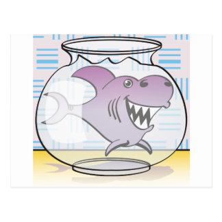Tiburón Postal