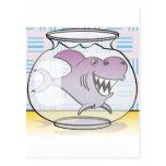 Tiburón Tarjetas Postales