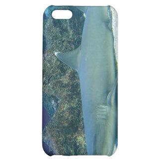 Tiburones en caso del iPhone 4 del arrecife de cor