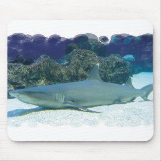 Tiburones en cojín de ratón del arrecife de coral alfombrilla de ratones
