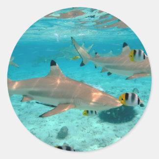 Tiburones en la laguna de Bora Bora Pegatina Redonda