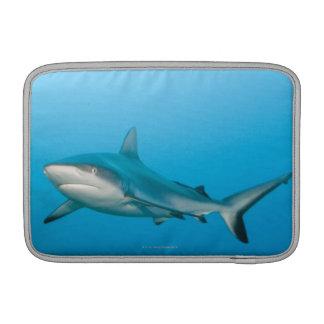 Tiburones grises del filón (amblyrhnchos del Carch Fundas Macbook Air