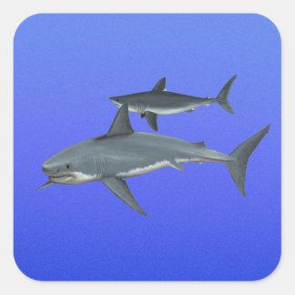 Tiburones Pegatina Cuadrada