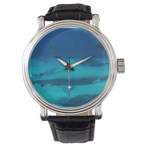 Tiburones Reloj De Mano