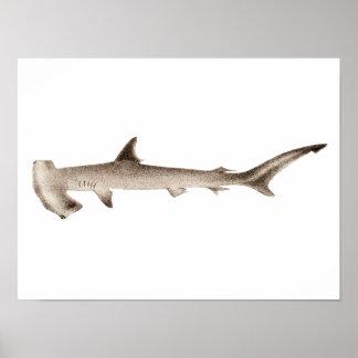 Tiburones retros del ejemplo del tiburón de póster