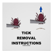 Tick Removal Instructions (Illustration) Poster