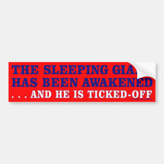 Ticked-Off Giant Bumper Sticker