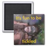 Tickle Me magnet