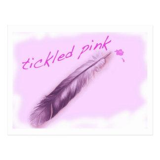 Tickled Pink Postcard