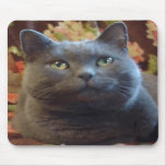 Tickles Mousepads