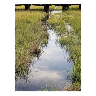 Tidal Creek Postcard