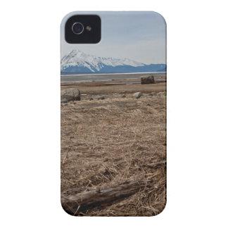 Tidal Flats iPhone 4 Cover