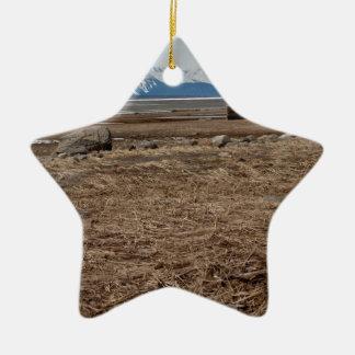 Tidal Flats Ceramic Ornament
