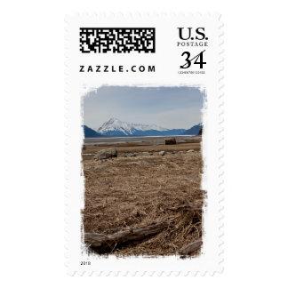 Tidal Flats Postage