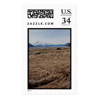 Tidal Flats Stamp